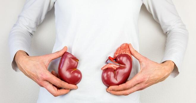 Лікування сечовивідних шляхів